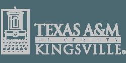 TExES Social Studies 7-12: 256 Authentic Questions
