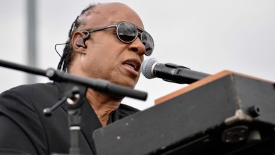 Photo of Stevie Wonder Performs in Kissimmee, Florida