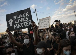 La question raciale en France