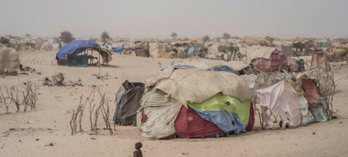 Niamey souhaite un appui de l'Algérie pour le retour de la population à Diffa