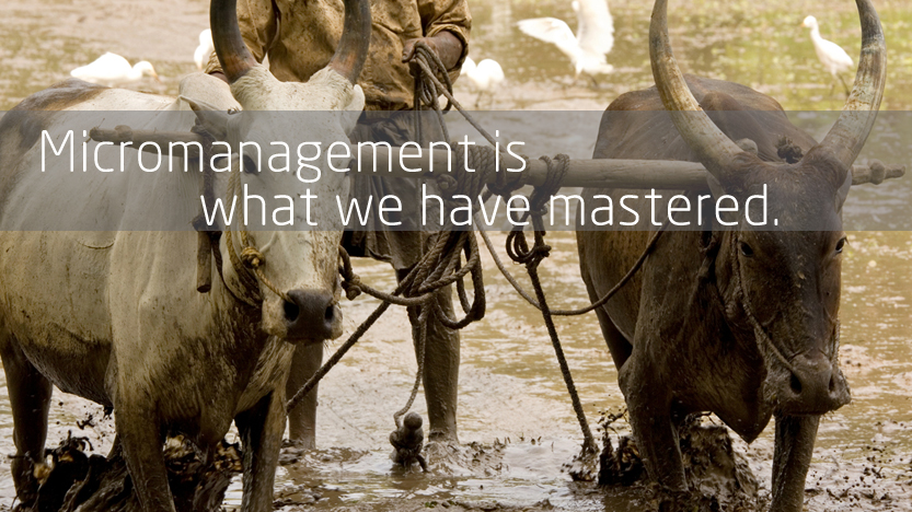 Micromanagement is what we have mastered.