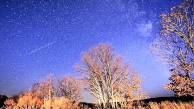 """صورة العالم على موعد مع زخة شهب  """"Orionids"""" مطلع هذا الشهر"""