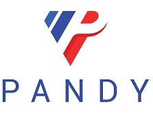 logo pandy permis