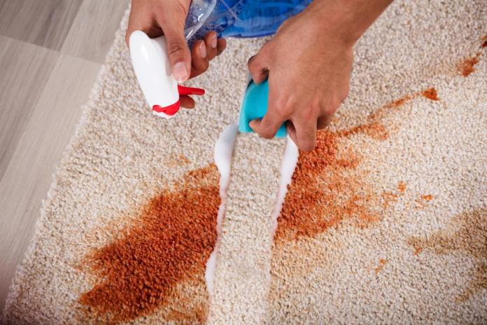 Janitor Cleaning Stain On Carpet   Autor: Andrey Popov