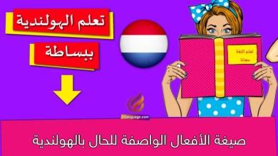 صيغة الأفعال الواصفة للحال بالهولندية