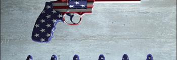 2nd Amendment Political Attack