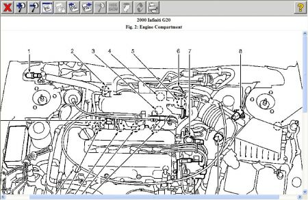 Infiniti G35 Engine Hose Diagram Ford Expedition Engine