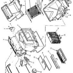 Wiring Diagram For Chevy Truck Tail Lights Whitetail Deer Vital Organs Heating Database