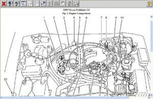 1999 Nissan Pathfinder Knock Valve?: I Just Had the Timing Belt,