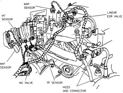 97 Chevy Vortec O2 Sensor Diagram, 97, Free Engine Image