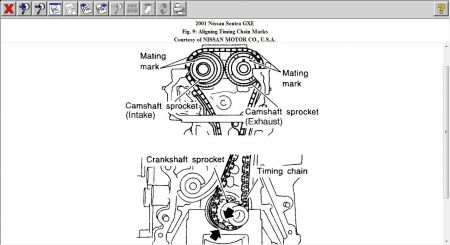 2001 Nissan Sentra How to Change a Timing Belt