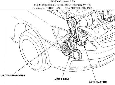 2003 Honda Accord Honda Accord Serpentine Belt: Hello, We