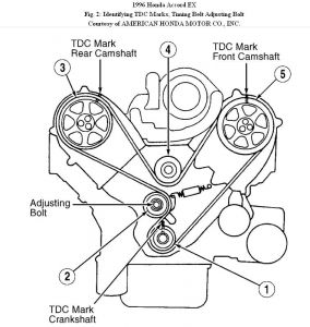 1996 Honda Passport Timing Tensioner: Engine Cooling