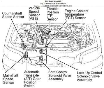 1996 Honda Accord Electrical or Transmission: My