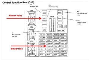 Ford Contour Oxygen Sensor Location Diagram  Wiring