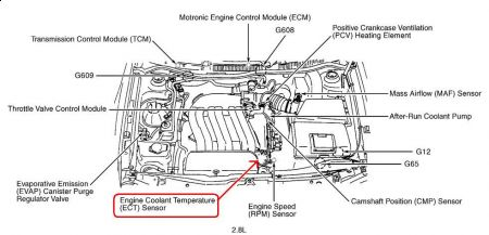 2000 Volkswagen Jetta Coolant Temperature Sensor: Can You