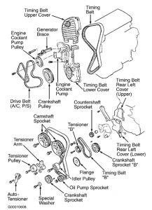 "2005 Kia Optima Timing Belt B: What Is Timing Belt ""B†I"