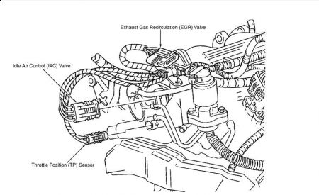 Alternator Wiring Diagram 96 S10