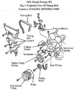 2001 Mazda Protege Timing Belt: I Took My Mazda to a