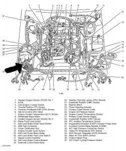 1997 Ford Thunderbird V8 Engine 2000 Ford Expedition V8