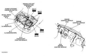 2004 Kia Rio: Where Is the Crankshaft Position Sensor Located and