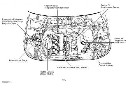 1998 jeep wrangler wiring diagram radio opossum skeleton audi a4 – and schematic design readingrat.net