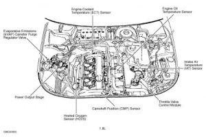 2003 Audi A4 Engine Diagram | Online Wiring Diagram