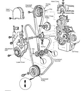 1985 Honda Accord Timing Belt: Engine Mechanical Problem