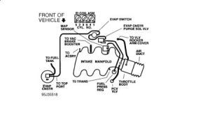 1996 Buick Century What Is the Vacuum Hose Distribution