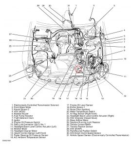 Lexus Es330 Fuse Box Diagram, Lexus, Free Engine Image For
