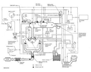 1995 Other Nissan Models Vacuum Hose Routing: Engine