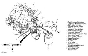 1995 Other Nissan Models Vacuum Hose Routing: Engine Mechanical