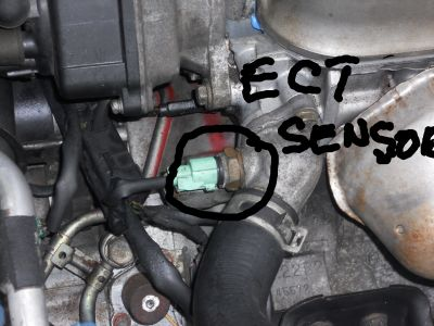 Location of Coolant Temp Sensor Hi Could You Tell Me