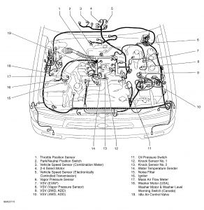 1996 Toyota 4Runner Engine Pinging: Hi, I Am Looking for