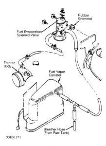 1996 Volkswagen Jetta Evaporative System Leak: I Dont
