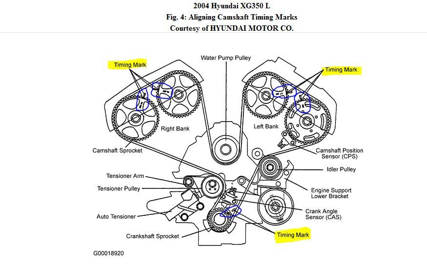 2004 Hyundia XG350 Timing Belt: 2004 Hyundia XG350L
