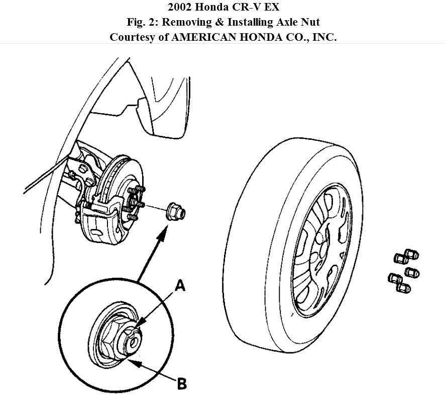 Service manual [How To Remove Front Differential 1999