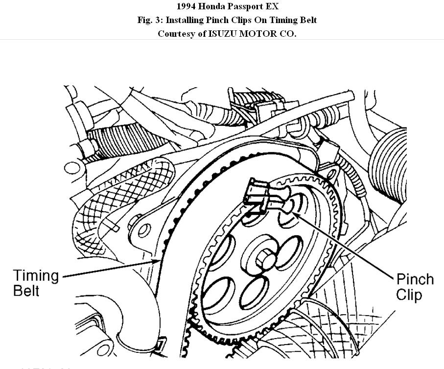 Honda Passport Timing Belt: How to Change Timing Belt