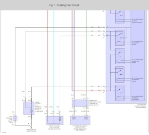 Ls1 Cooling Fan Wiring Diagram LS1 Engine Diagram Wiring
