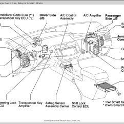 1999 Toyota Corolla Fuse Box Diagram Of Insect Beetles 1995 Wiring Manual