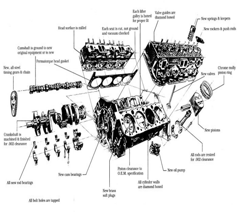 350 small block engine diagram