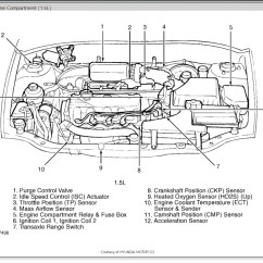 2000 Hyundai Elantra Fuel Pump Wiring Diagram Stratovolcano With Labels 3 8 Engine Library
