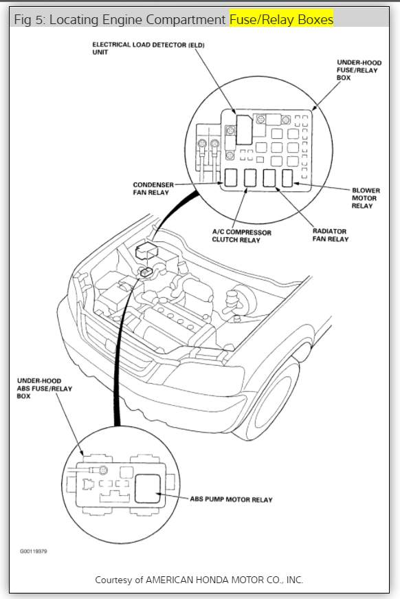 2008 Honda Civic Ac Relay Diagram. Honda. Wiring Diagram