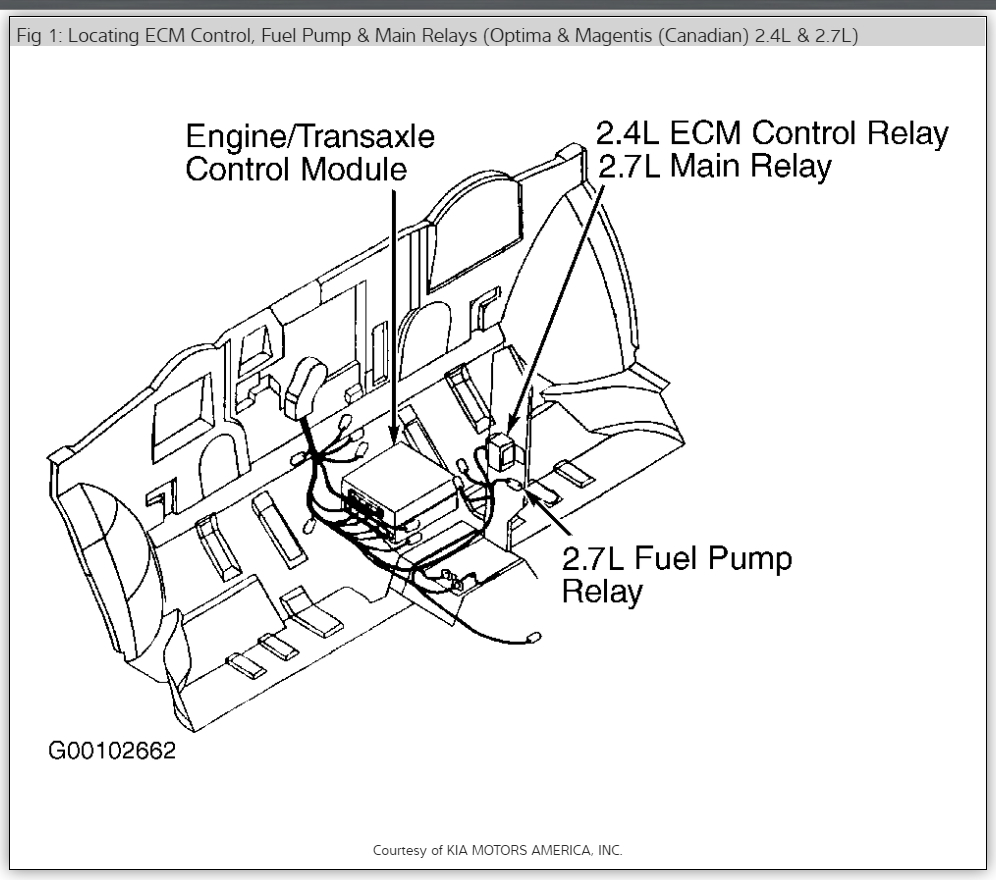 2002 Kia Sedona Transmission Problems ~ Best KIA