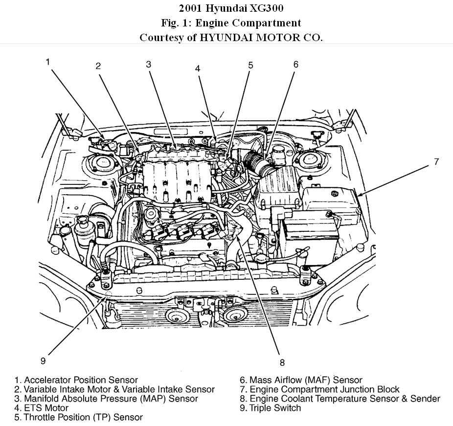 2001 Hyundai Xg300 Engine Diagram. Hyundai. Auto Parts