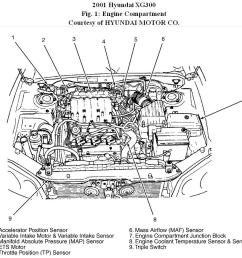 2001 hyundai xg300 engine diagram hyundai auto parts 2001 hyundai santa fe engine diagram 2001 hyundai [ 926 x 871 Pixel ]