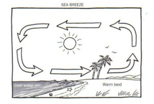 NCERT 7th Class (CBSE) Science: Heat and Temperature