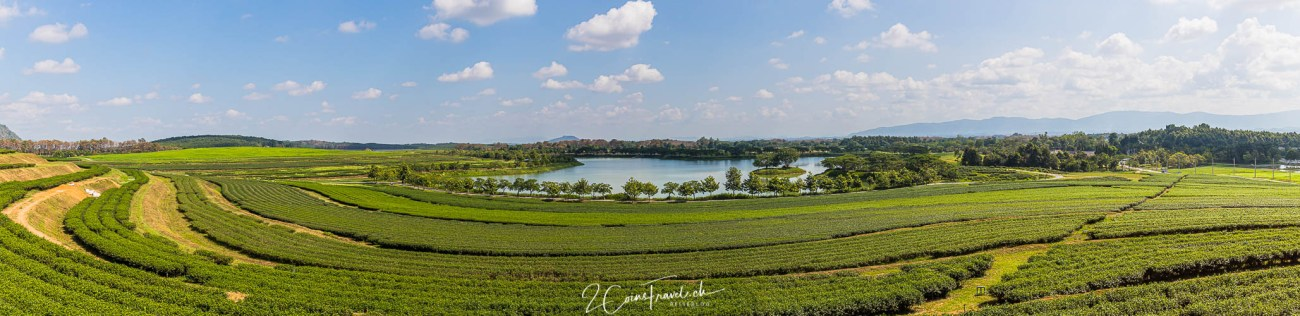 Singha Park Chiang Rai Panorama