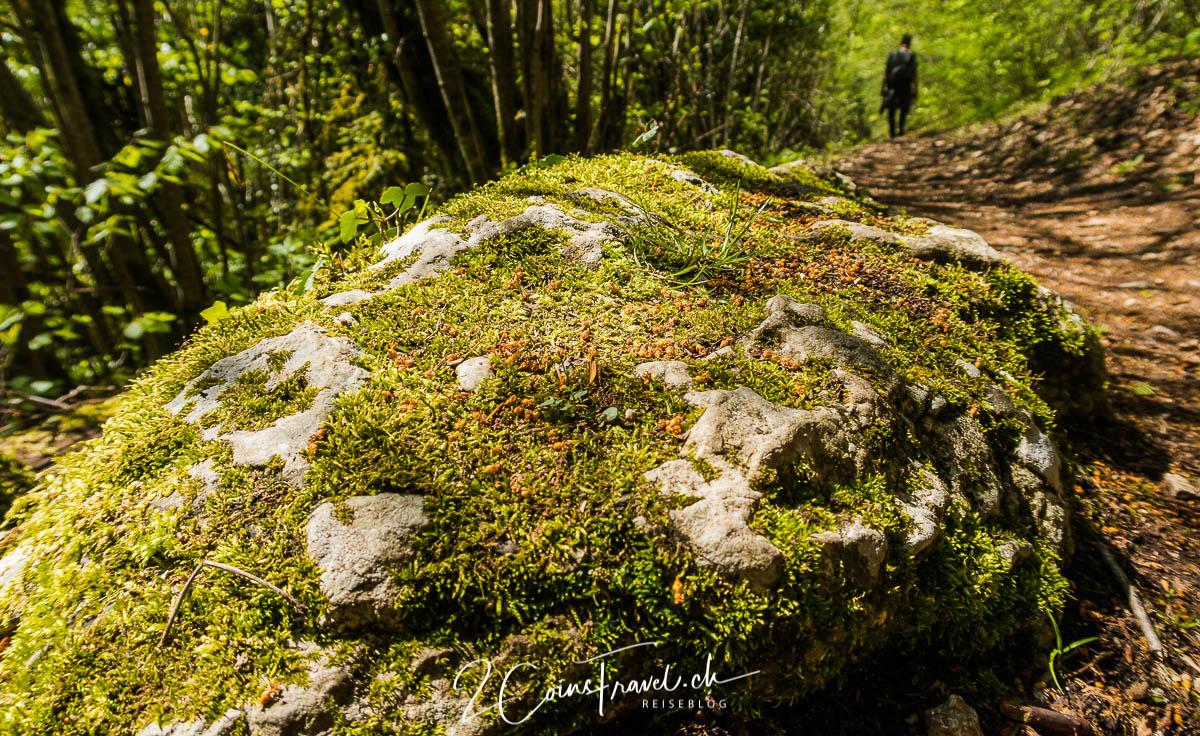 Wanderweg bei Saint Ursanne