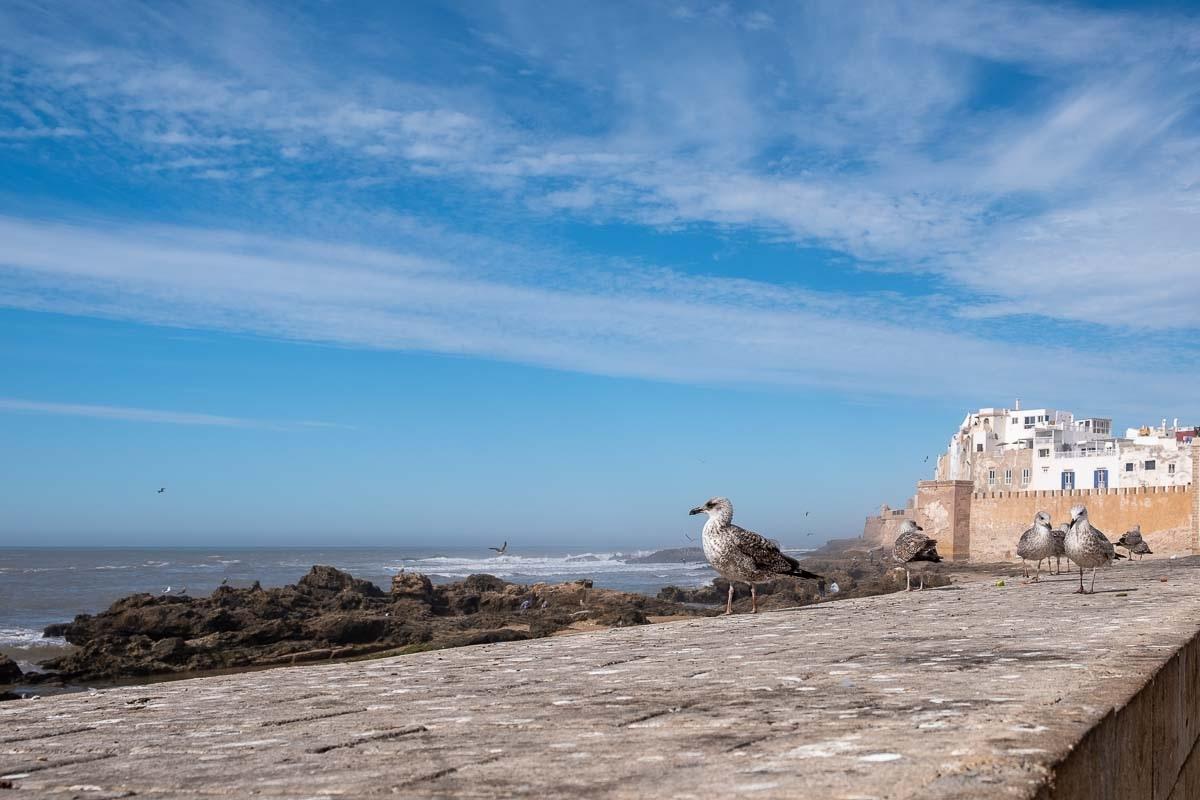 Un giorno a Essaouira